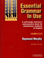 Essential grammar in use 2ed edition